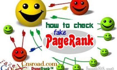 how-to-check-Fake-PageRank