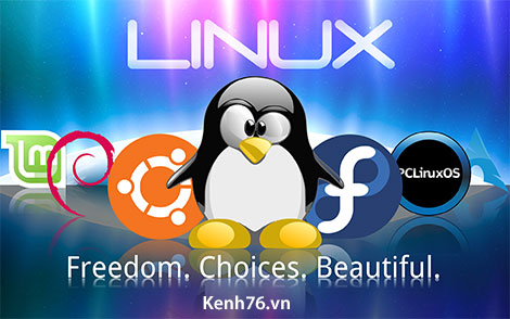liinux-freedom-choices-beautiful