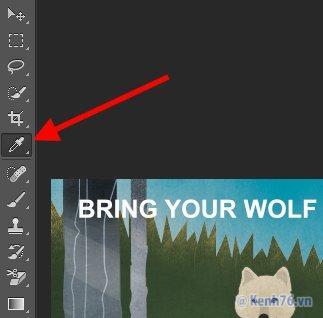 Hướng dẫn sử dụng Photoshop cho người mới | Cách sử dụng Photoshop cơ bản